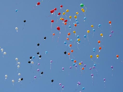 Balonnen-voor-ballonwedstrijden-3